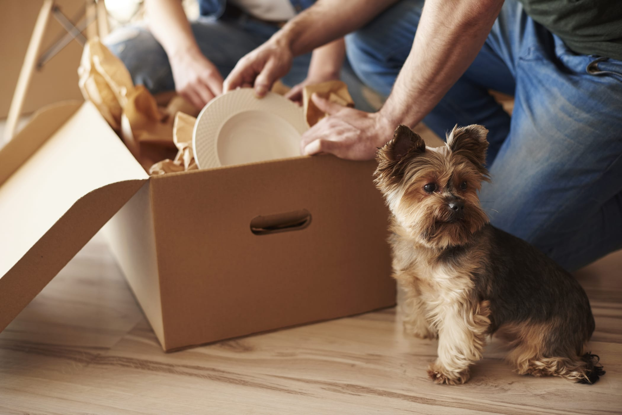 Items to pack first during shifting